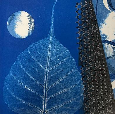 Leaf, Feather & Forms III.jpeg