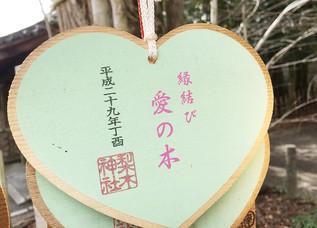 L'arbre d'amour du sanctuaire de Nishiki