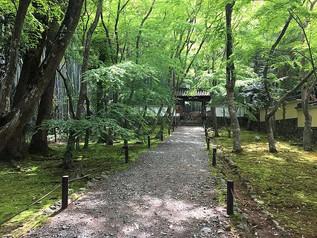 Vert frais et mousse de Jizōin