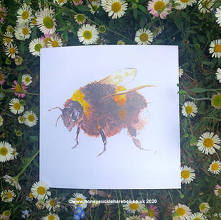 The Bees Knees Card
