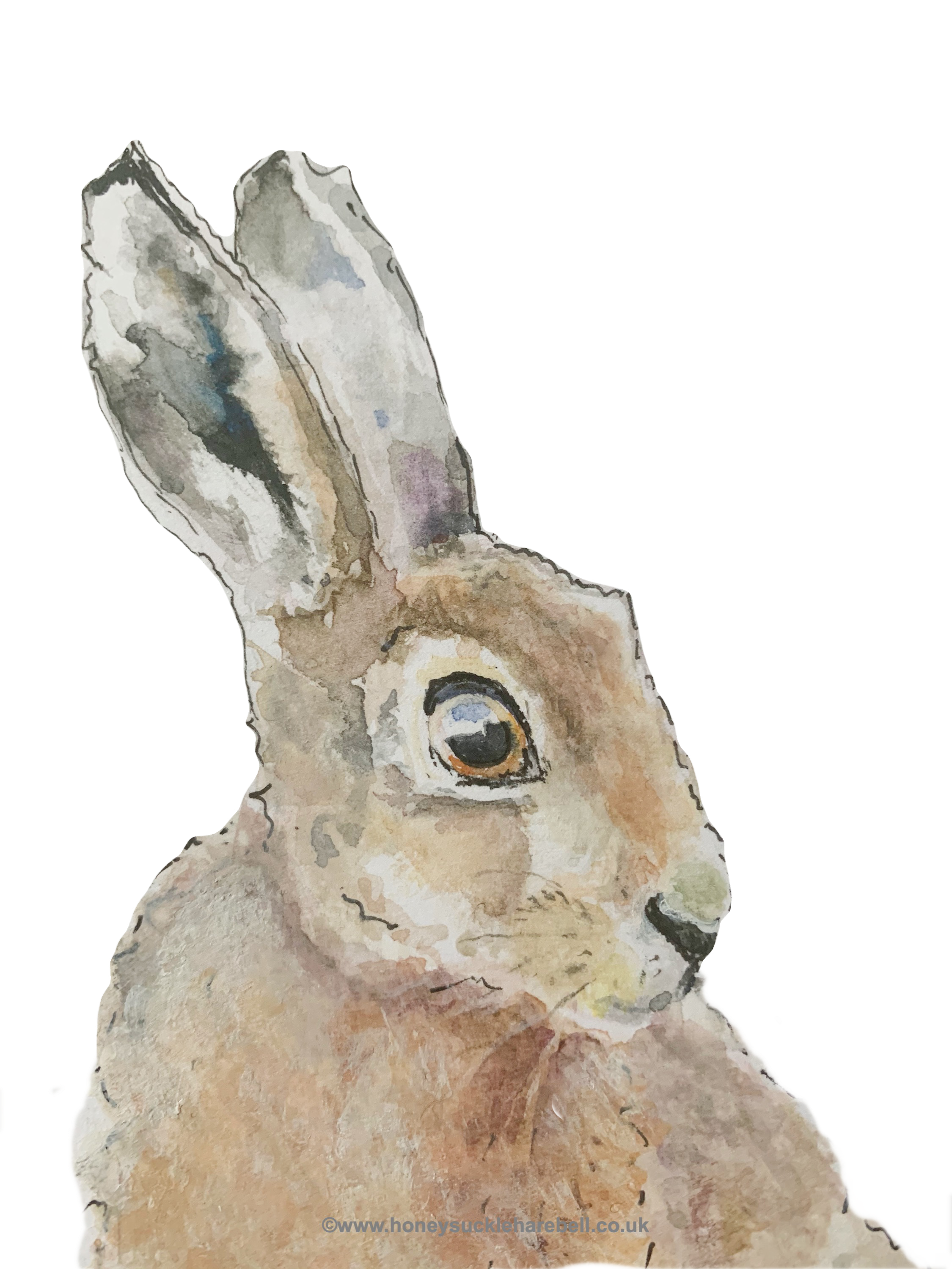 Hare's Looking at You