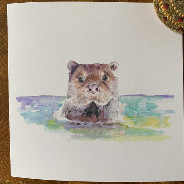 'Hello,from the Otter side'