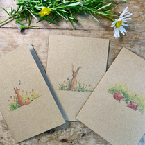Pack of Assorted Kraft Cards