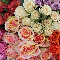 Assorted Roses.2.jpg