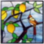 Detalle , arbol del limon.jpg