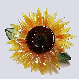 Sunflower, classes (2).jpg