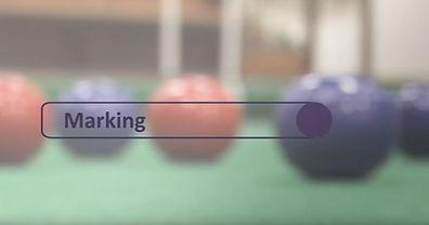 Marking - video image.JPG