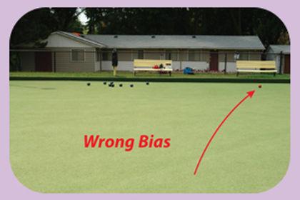 Wrong-Bias round corners pink.jpg