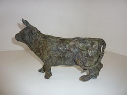 Vache siffleuse, profil