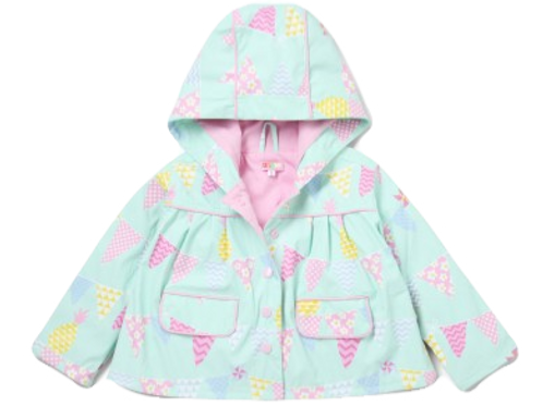 Raincoat - Pineapple Bunting