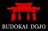 LOGO BUDOKAI CAMISETA-1-OK.jpg