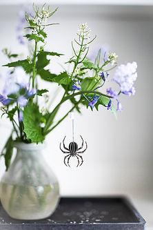Spinnen @Schachtelwerk