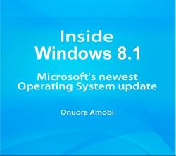 windows 8.1 snip.PNG