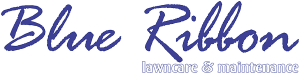 Blue Ribbon Lawn Care logo