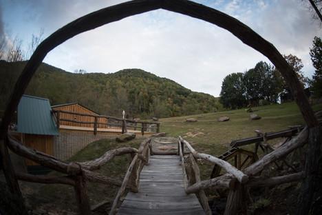 Locust Arch