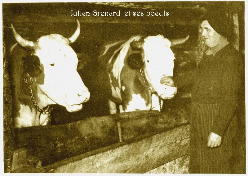 Julien GRENARD.png