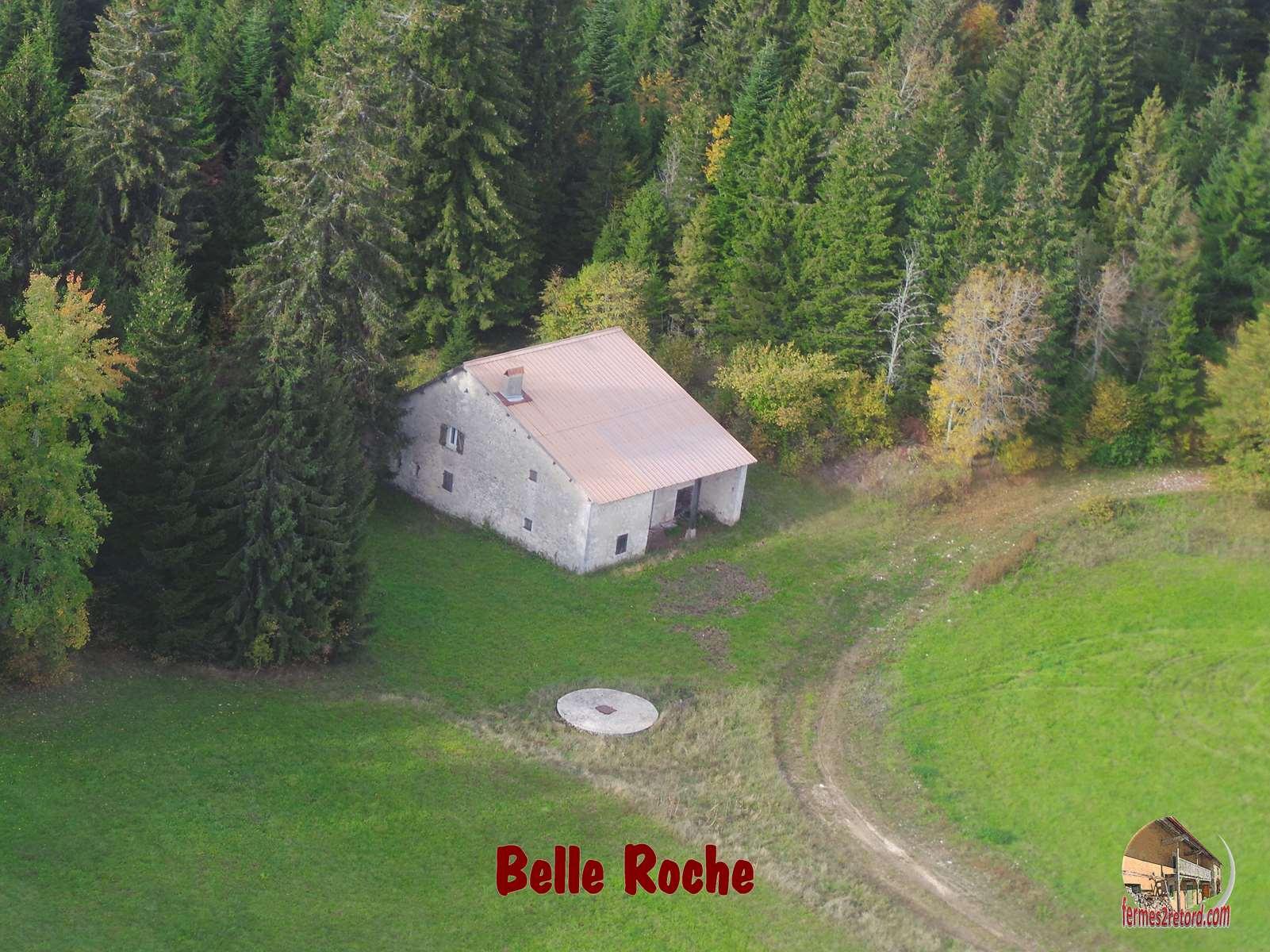 Belle Roche3.jpg