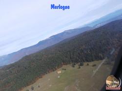 Merlogne2.jpg