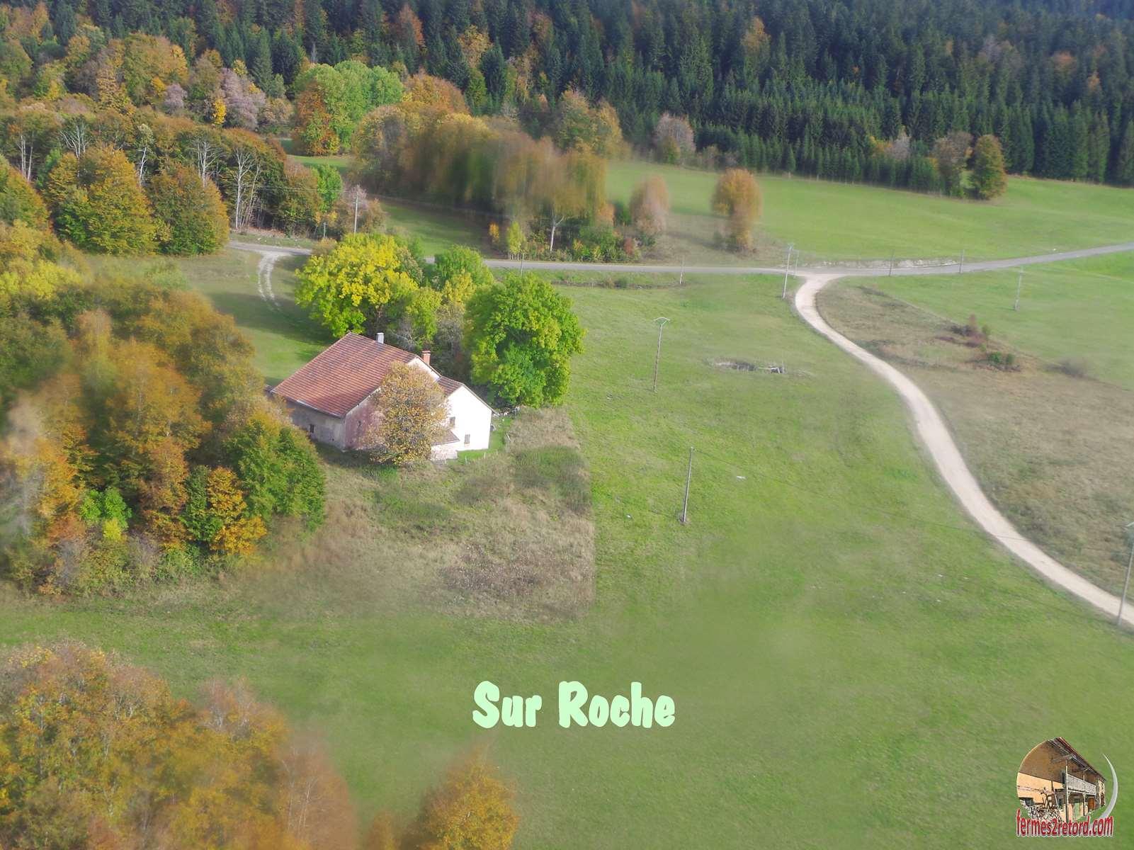 Sur Roche.jpg