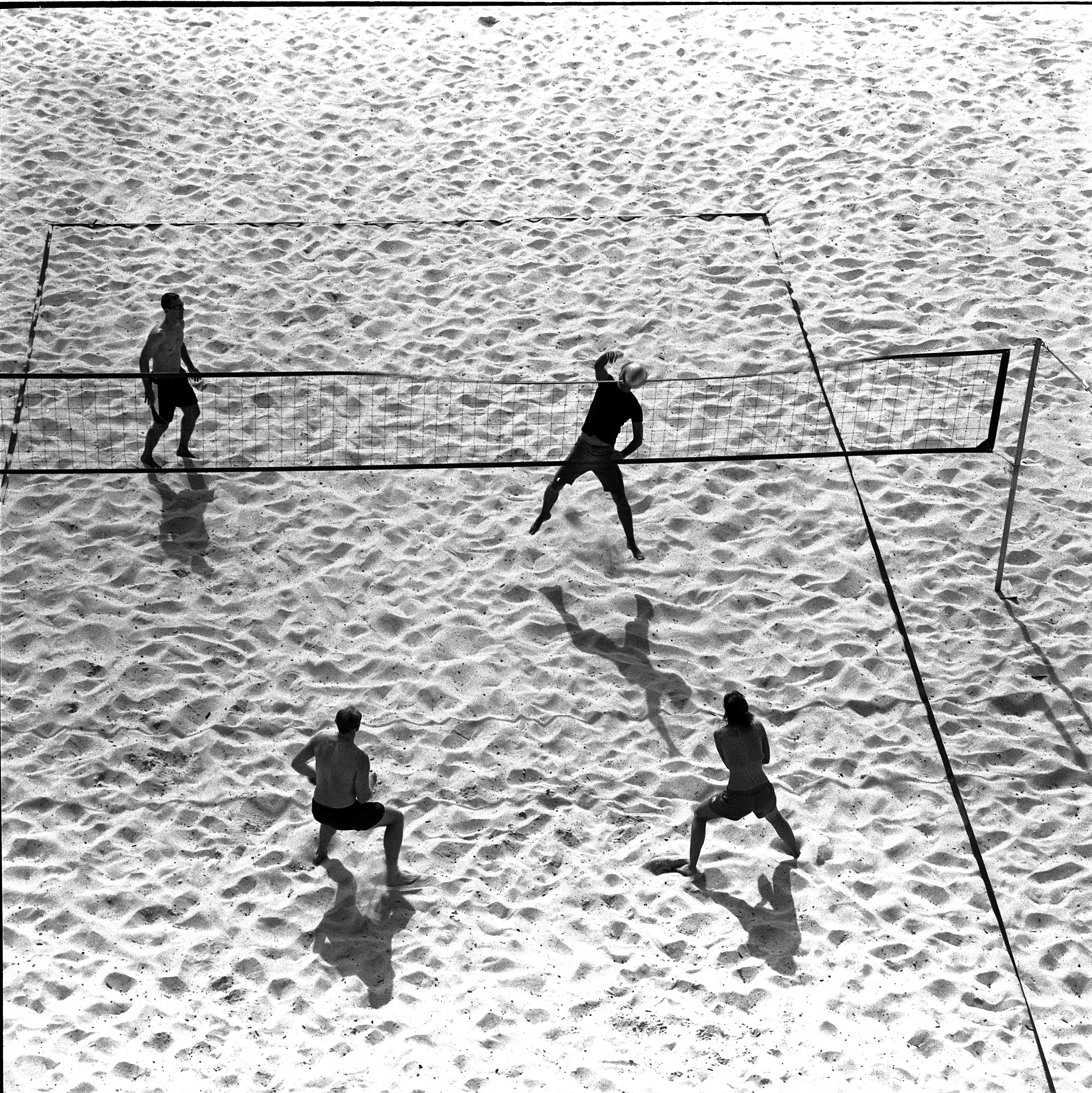 Tamarama Volleyballers
