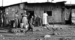 Kibera 24