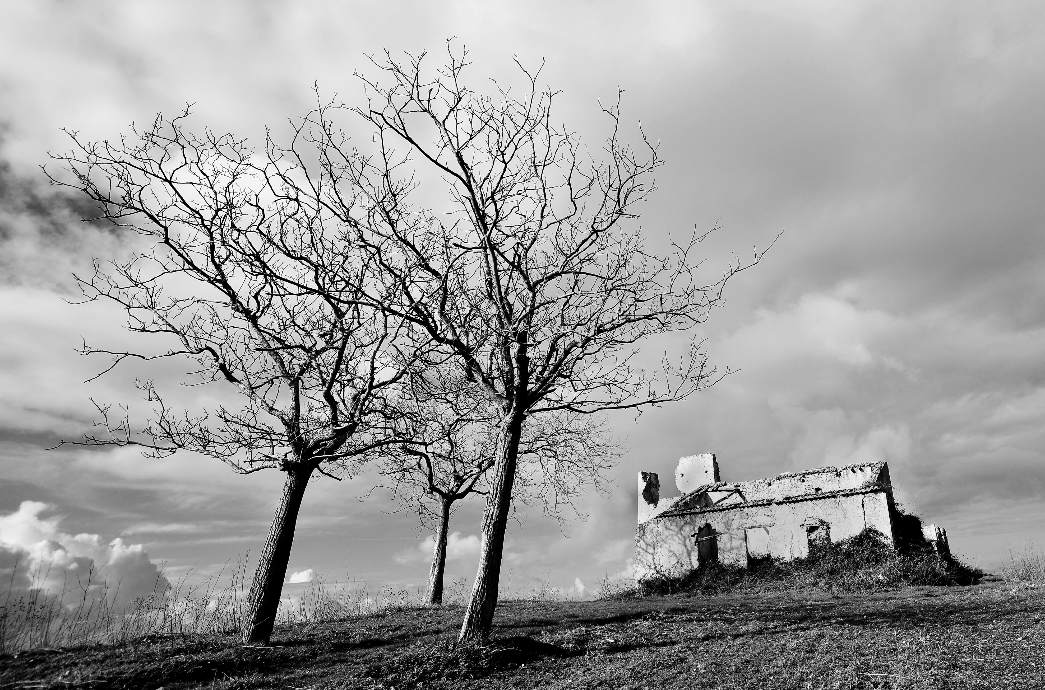 Calabrian Ruin 2