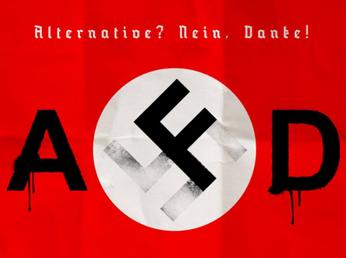 L'estrema destra tedesca (e tutti i sovranisti) boccia il governo Lega-M5S: manovra folle a spese de