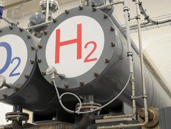 La transizione ecologica potrebbe essere un bagno di sangue.......il nucleare una risposta positiva.