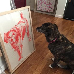 Billie tiene nuevo amigo