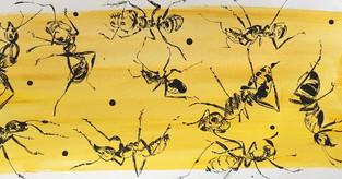 Bichos amarillos