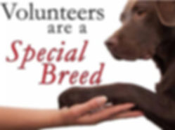 Duplin County Animal Services