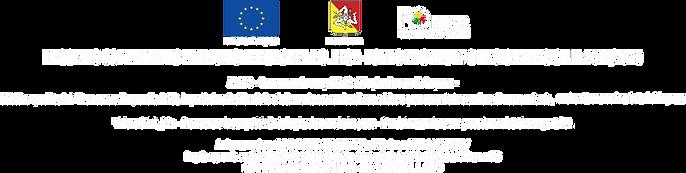 BANDO UNIONE EUROPEA BIANCO.png