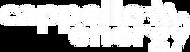 Energy logo bianco.png