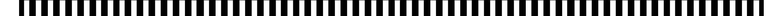 large-stripe-.jpg