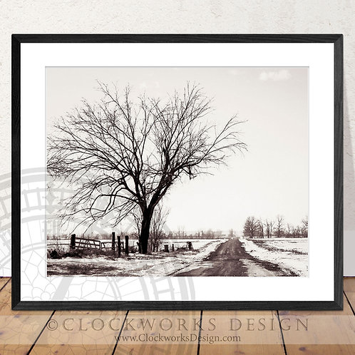 On the Horizon | Photographywinter, snow, country road, secluded,back road, prin