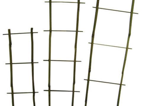 """24"""" Natural Bamboo Flair Trellis 100/bale"""
