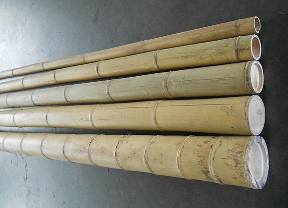 "5""x10' Large Diameter Bamboo Poles(Bale of 5)"