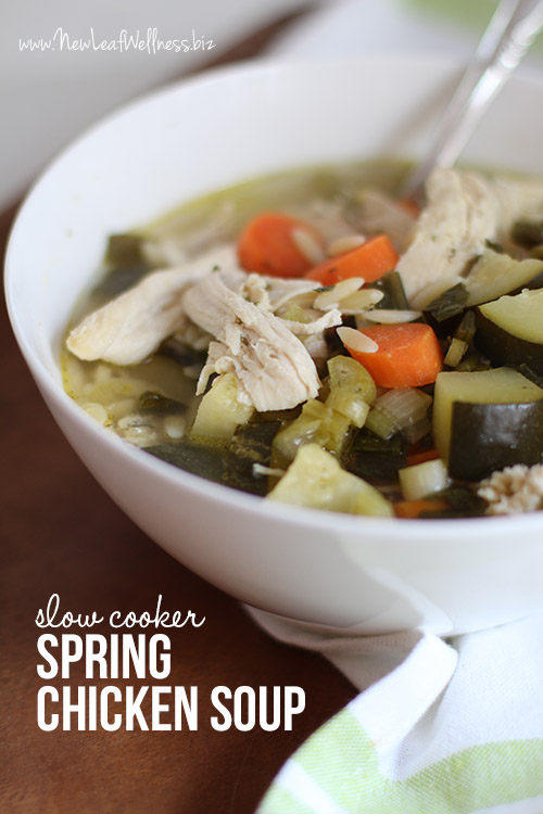 crockpot spring chicken soup