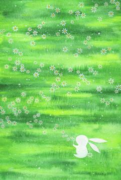 白兔的快樂時光 Rabbit's Pastime