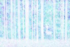 挪威的森林 Norwegian Wood