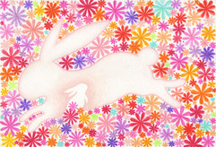 原野間的白兔 Rabbit in the Field