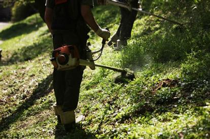Cutting Grass Strimmers