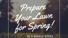 Prepare Your Lawn for Spring in 5 Simple Steps