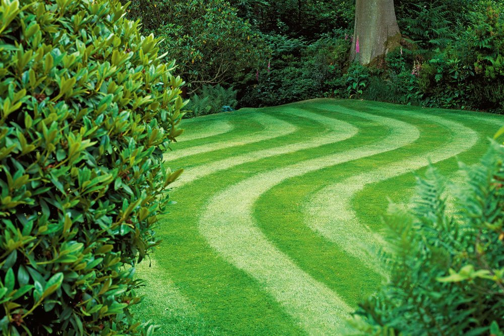 give your grass a different cut