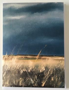 'Marsh light'