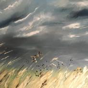 'Let there be light' Holkham grasses