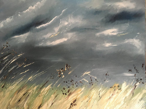 'Let there be light' Holkham grasse