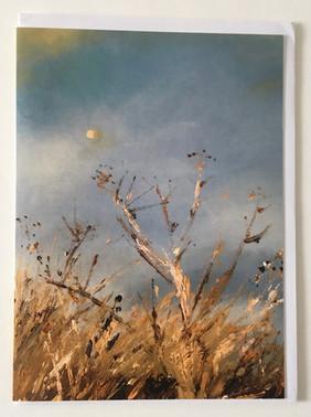 'Daylight moon'
