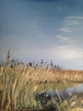 'Feather skies' Salthouse reed beds