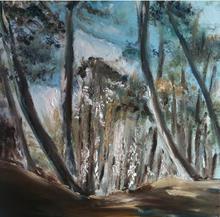 'Happy days' Wells pinewoods